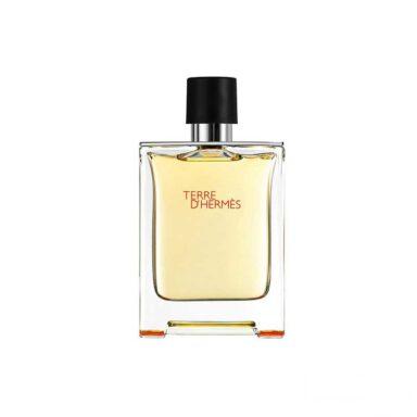 ادکلن مردانه هرمس Hermes مدل Terre d`Hermes Parfum حجم 100 میلی لیتر 1 رادک