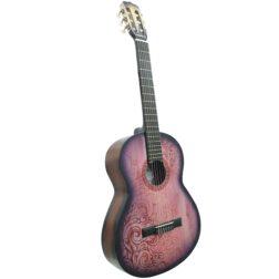 گیتار کلاسیک ایران ساز مدل F850D