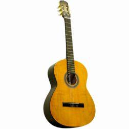 گیتار ایران ساز مدل  F700